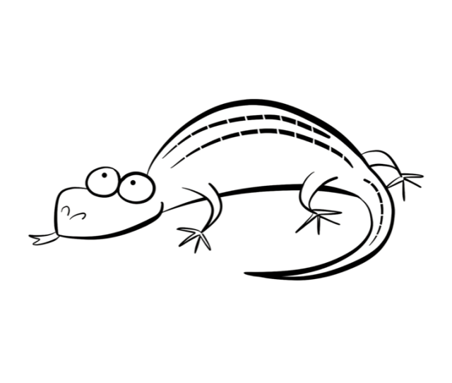 Coloring Pages Lizard Coloring Home