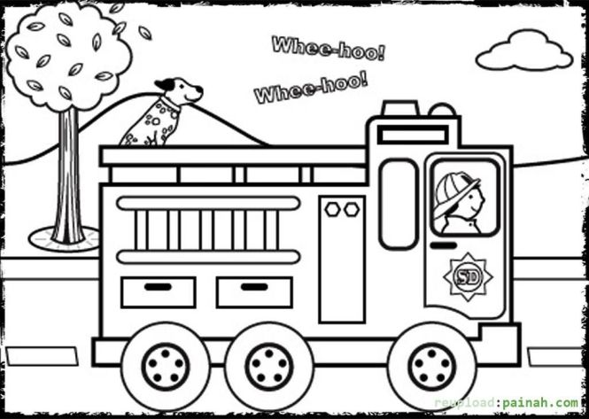 Animal Safety Coloring Pages For All Ages