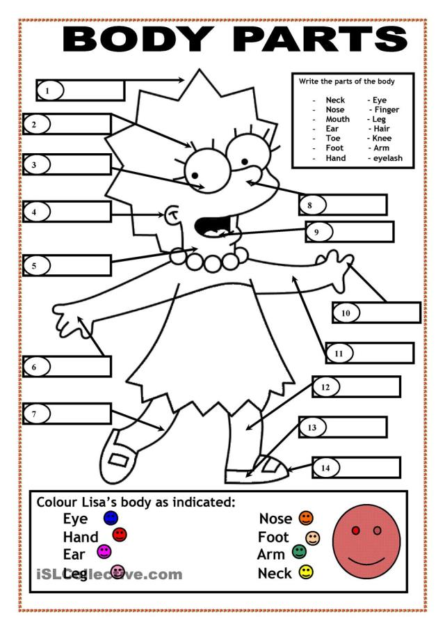 Body Parts Coloring Page For Kids - Coloring Home