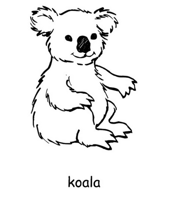 australia day coloring pages 9 coloring kids