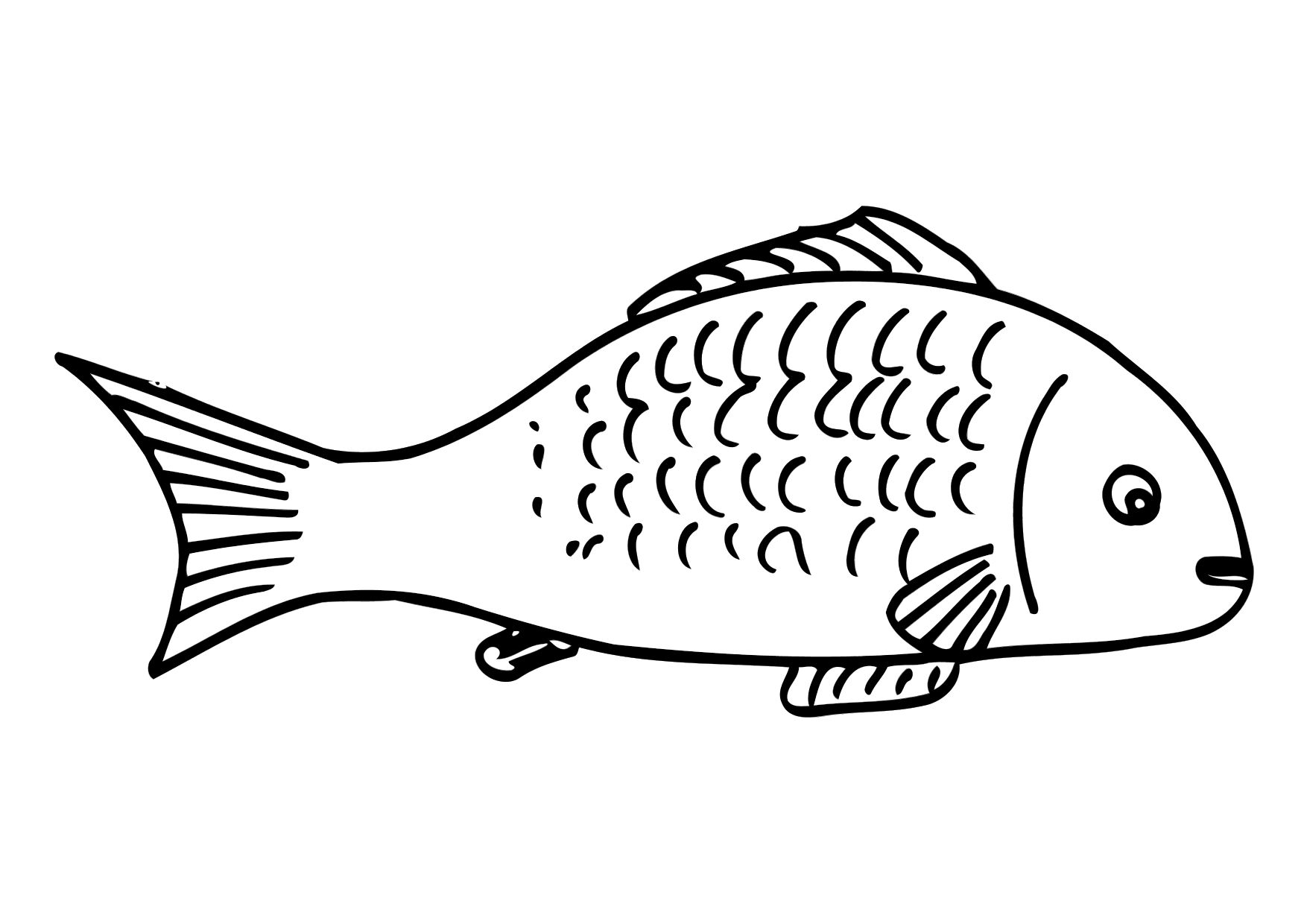 free kids fish coloring pages 11 activities fish coloring pages 11