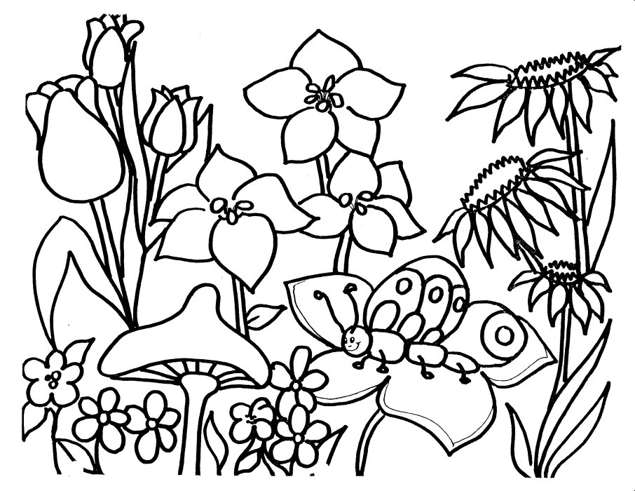 flower coloring pages 18 coloring kids