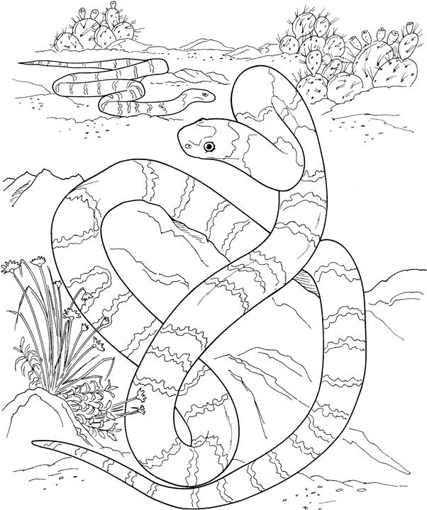 kids snake coloring pages 10 activities snake coloring pages 10