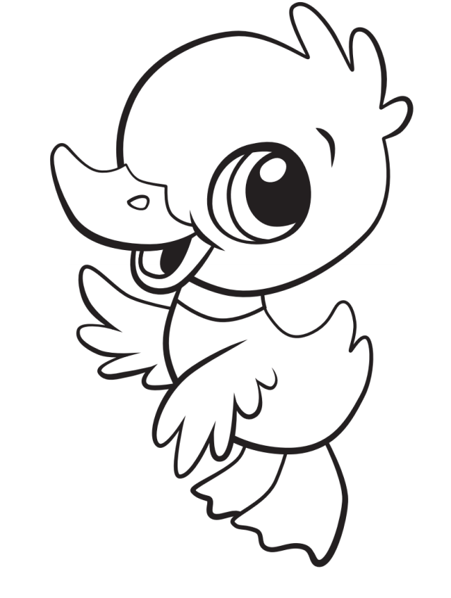 Cute Baby Duck Coloring Page - Free Printable Coloring Pages for Kids