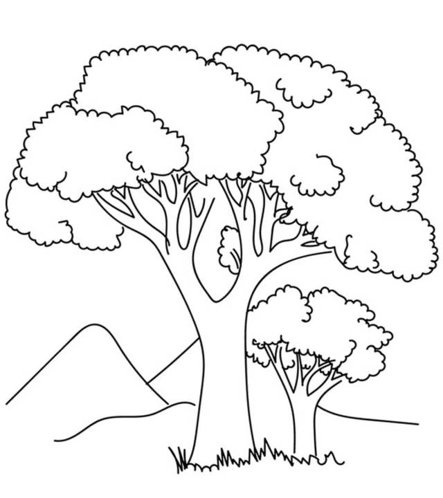 Two Tree Coloring Page - Free Printable Coloring Pages for Kids