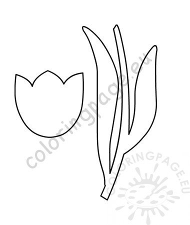 photograph relating to Tulip Pattern Printable named Tulip template Coloring Site