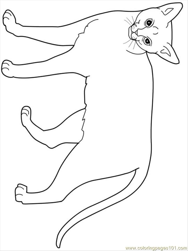 Free Printable Cat Coloring Pages Sheets Cartoon Coloring Book Pages Rubber Duck For Kids Coloring Ugly Cat Coloring Page Free Printable Coloring Pages Printing Help How To Perfect Cat Coloring Pages Coloring