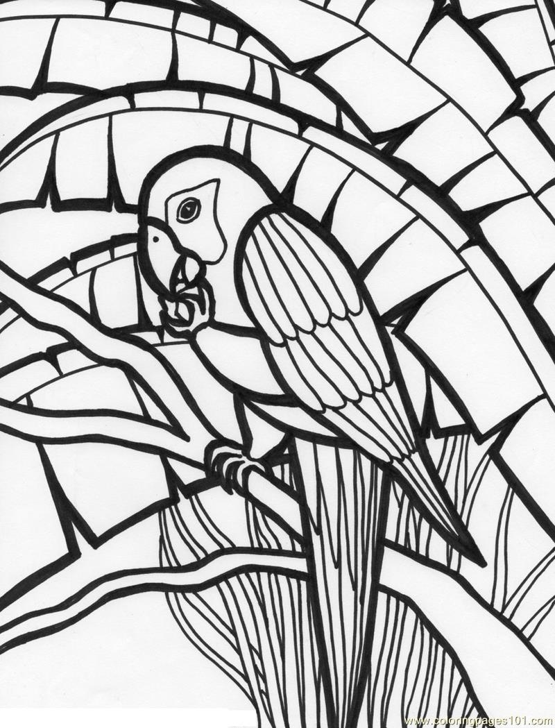 coloring pages of parrots for kids pages of parrot for kids