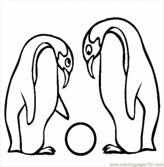 Emperor Penguin Coloring Page