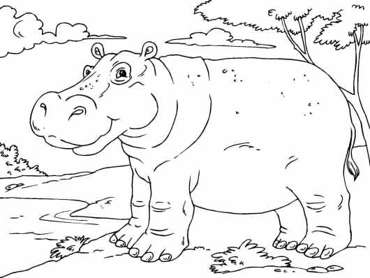 happy hippo coloring page