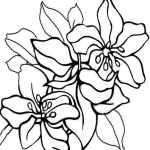 free printable summer flowers coloring pages