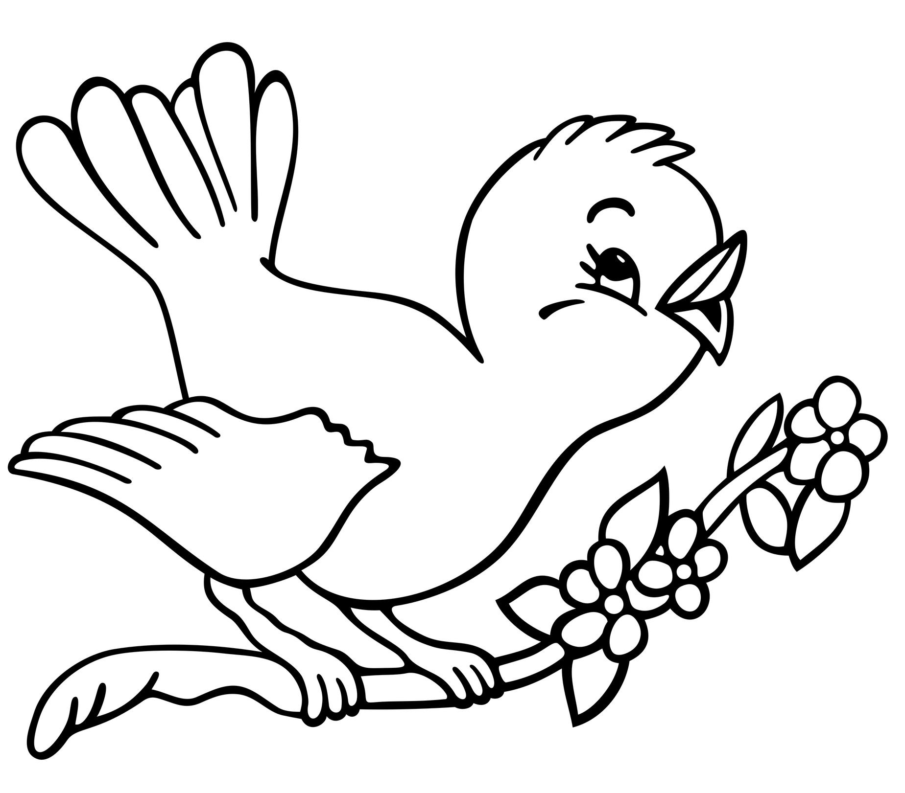 Birds Coloring Pages to Knowing