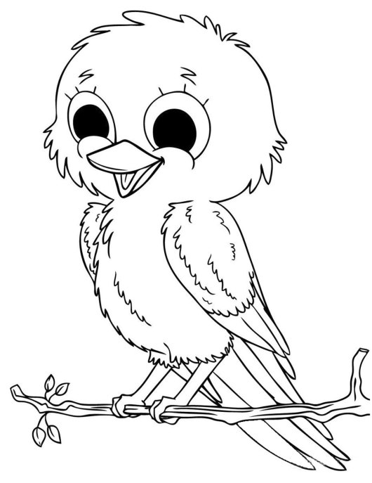cute-baby-animal-birds-coloring-pages