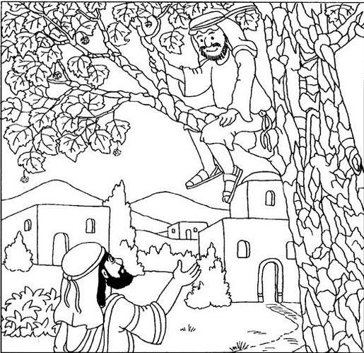 15 Printable Zacchaeus Tree Coloring