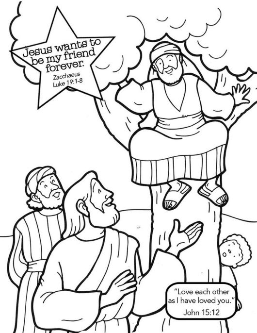 zacchaeus-tree-story-coloring-book