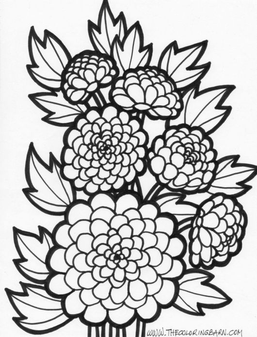 intricate-real-flower-coloring-page