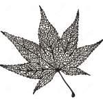 japan-maple-leaf-zentangle-drawing