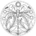 Dragonfly-Mandala-Coloring-Book-Johanna-Basford