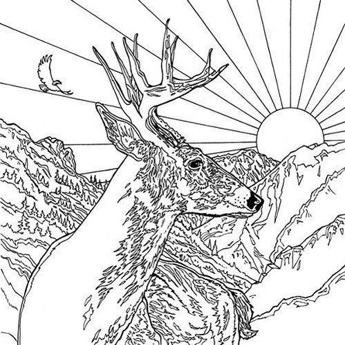 Legendary-Landscapes-Coloring-Book-Deer-Mountain-Background