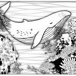 at-beach-coloring-book-fish