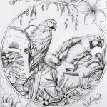 colour-my-dreams-coloring-book-birds