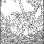 creative-haven-forest-winged-fantasy-coloring-book-dragon