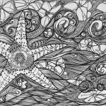 intricate-starfish-coloring-page