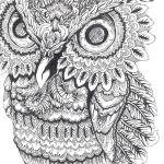 owl-coloring-book-johanna-basford