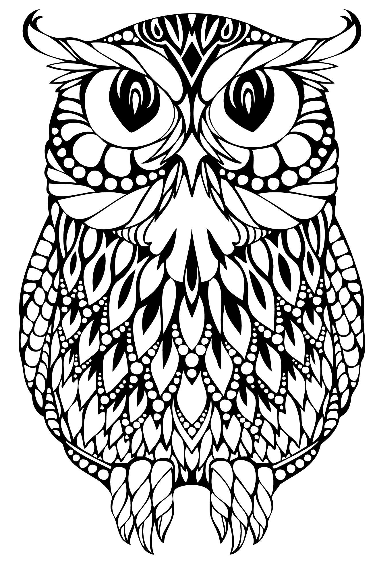 charming-owl-mandala-coloring-page