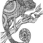 Animal Mandala Chameleon Clipart