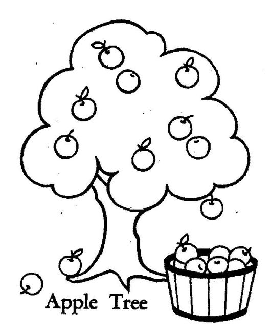 Apple Tree And Fruit Coloring Page