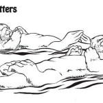 sea otter mammals coloring page
