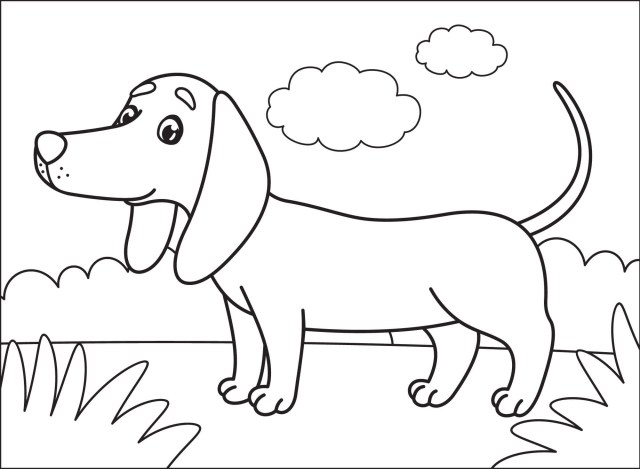 Dachshund Coloring Pages - Dog Coloring Pages - Coloring Pages For