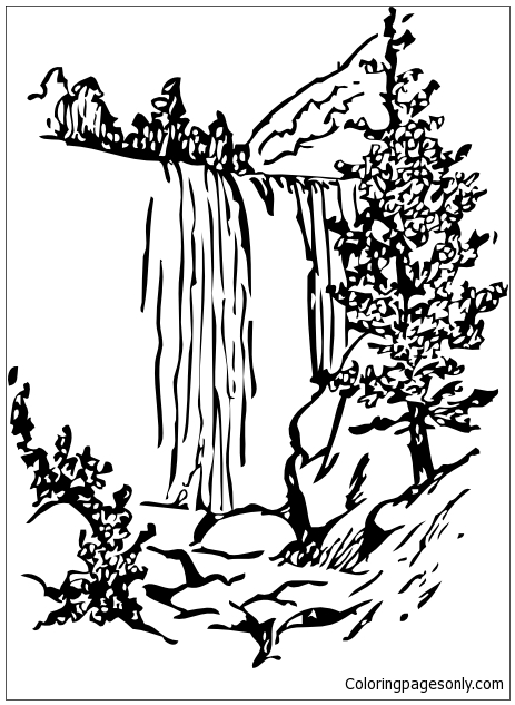 Forest With Waterfalls Coloring Page Free Coloring Pages