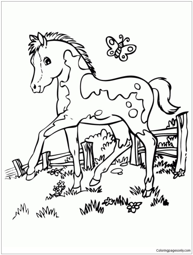 Marvelous Cute Horse Coloring Pages - Horse Coloring Pages