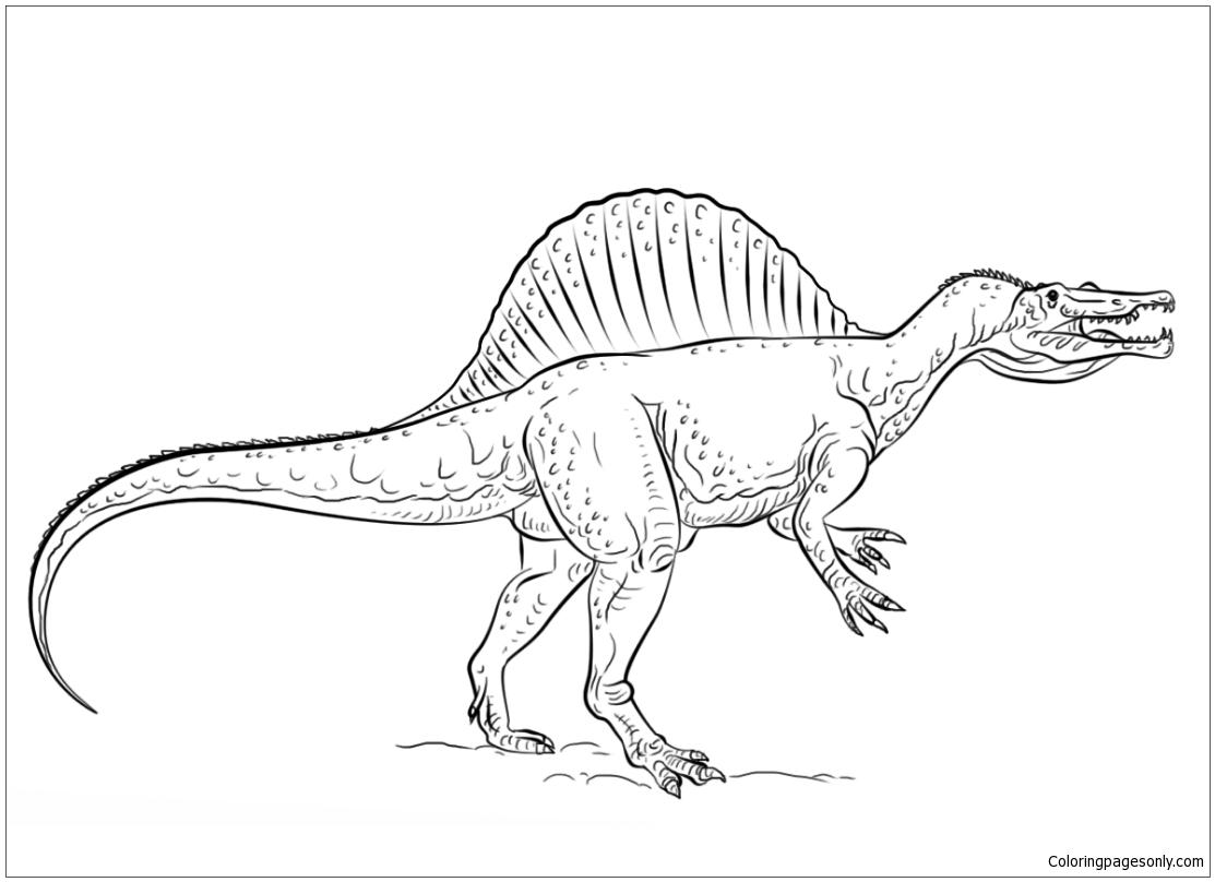 Peavey Raptor Plus Exp Wiring Diagram