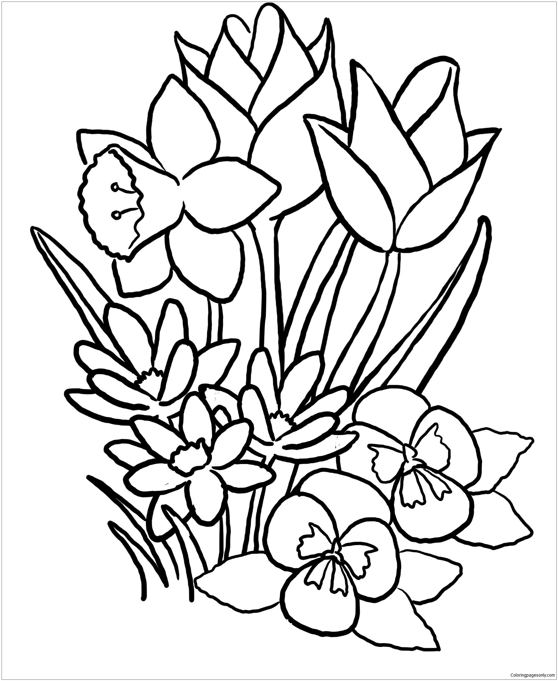 Spring Coloring Pages Coloringpagesonly