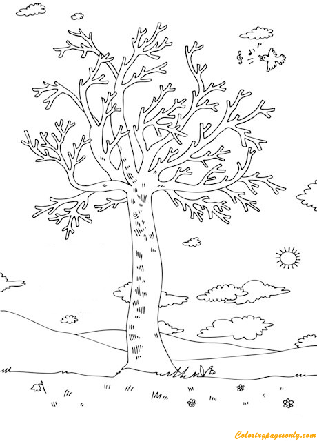 Spring Tree With Leaves And Blossoms Coloring Page Free