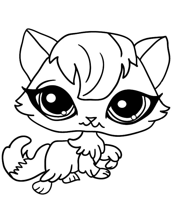 big eyed female cat for pet coloring page  coloring sky