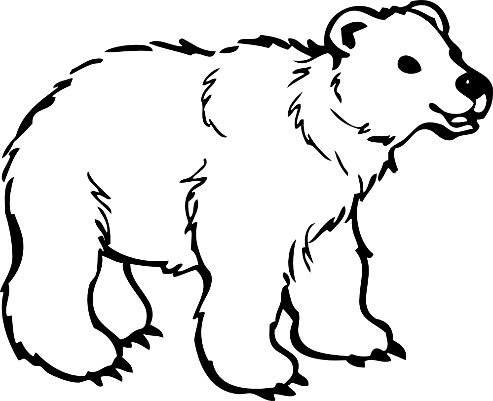 bear coloring pages druntk