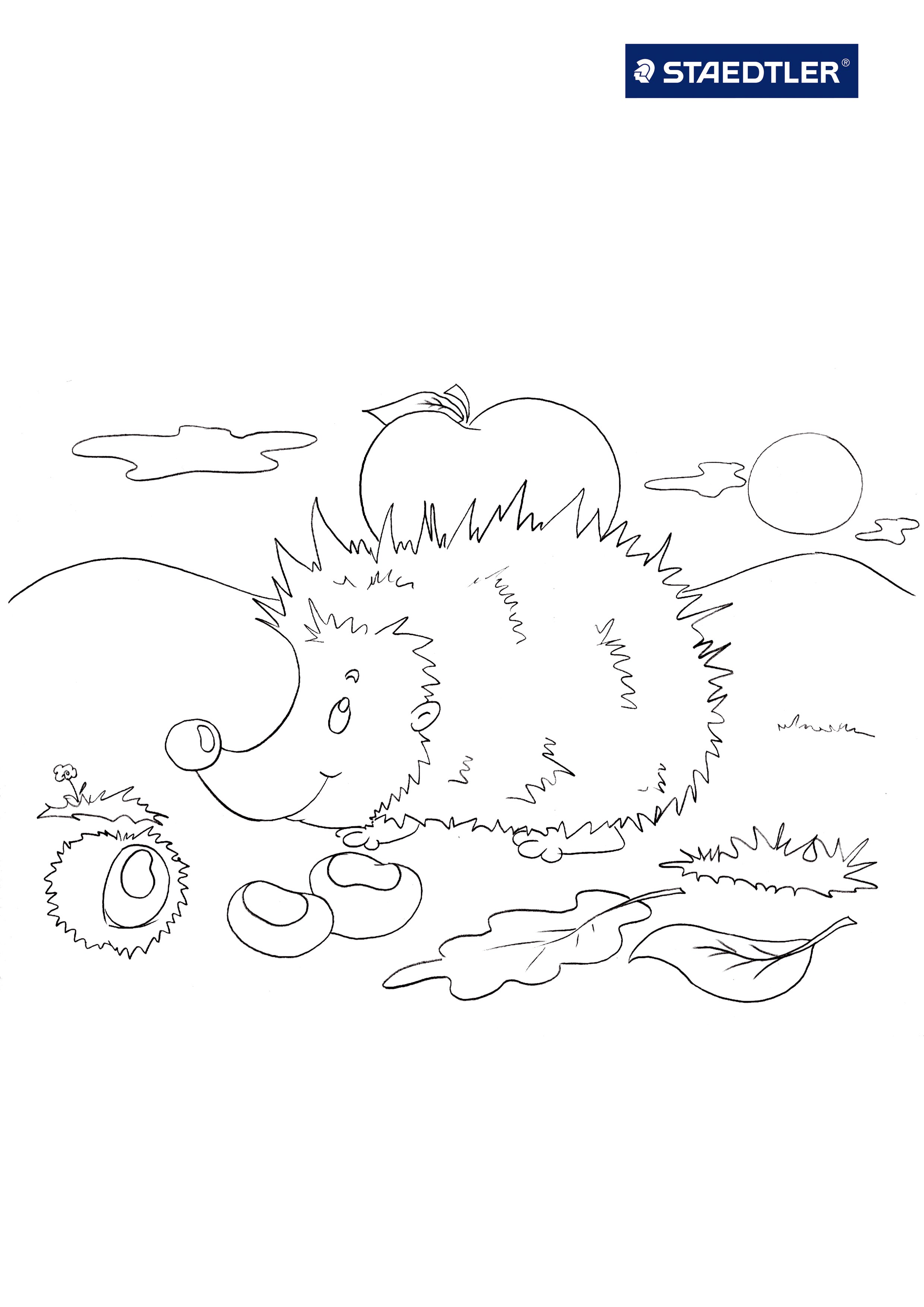 Hedgehog Coloring Pages To Download And Print For Free