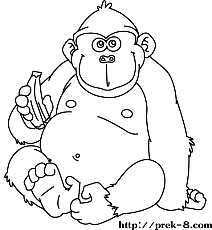 Jungle animal coloring pages to download and print for free | jungle animals coloring pages for toddlers