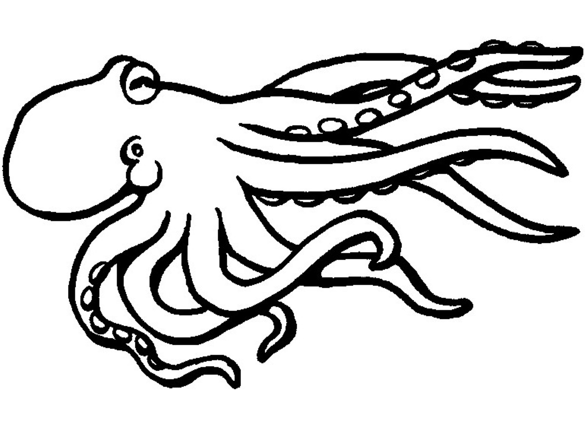 Octopus Coloring Pages To Download And Print For Free