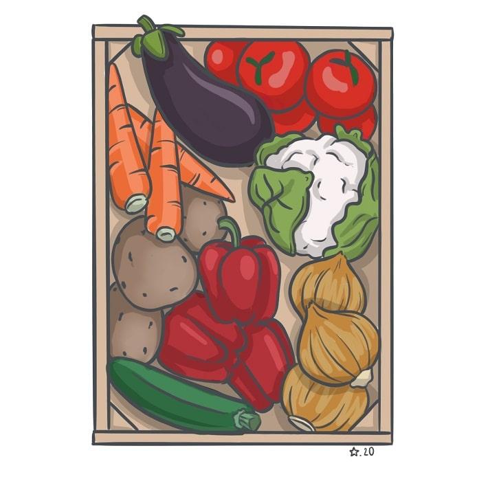 illustration : Cagette de légumes dessin numérique
