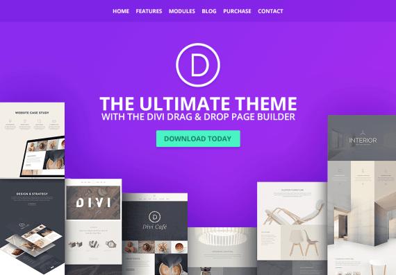Wordpress eCommerce theme Divi