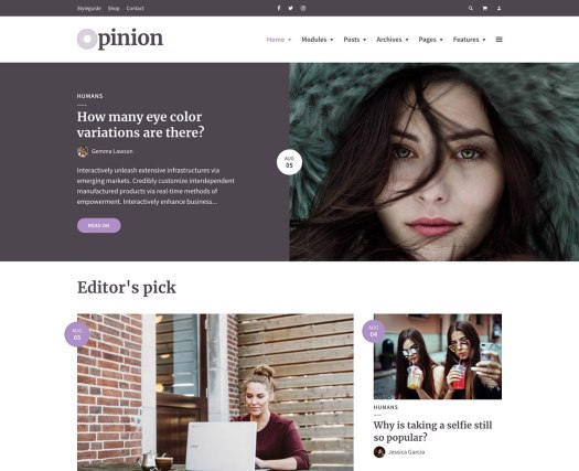 opinion simple wordpress blog theme