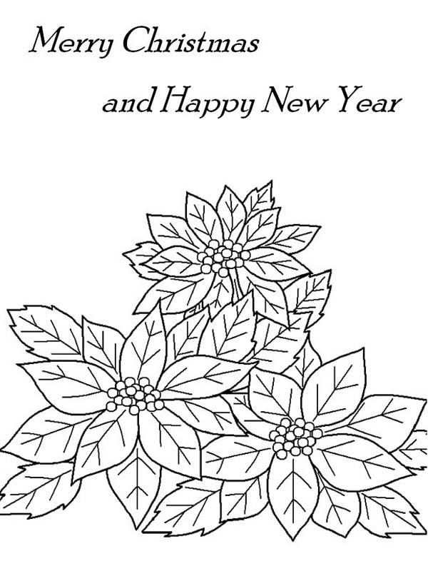 christmas and new years eve decor  poinsettia flower