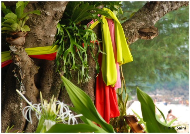 Colorful bands of cloth tied to a tree