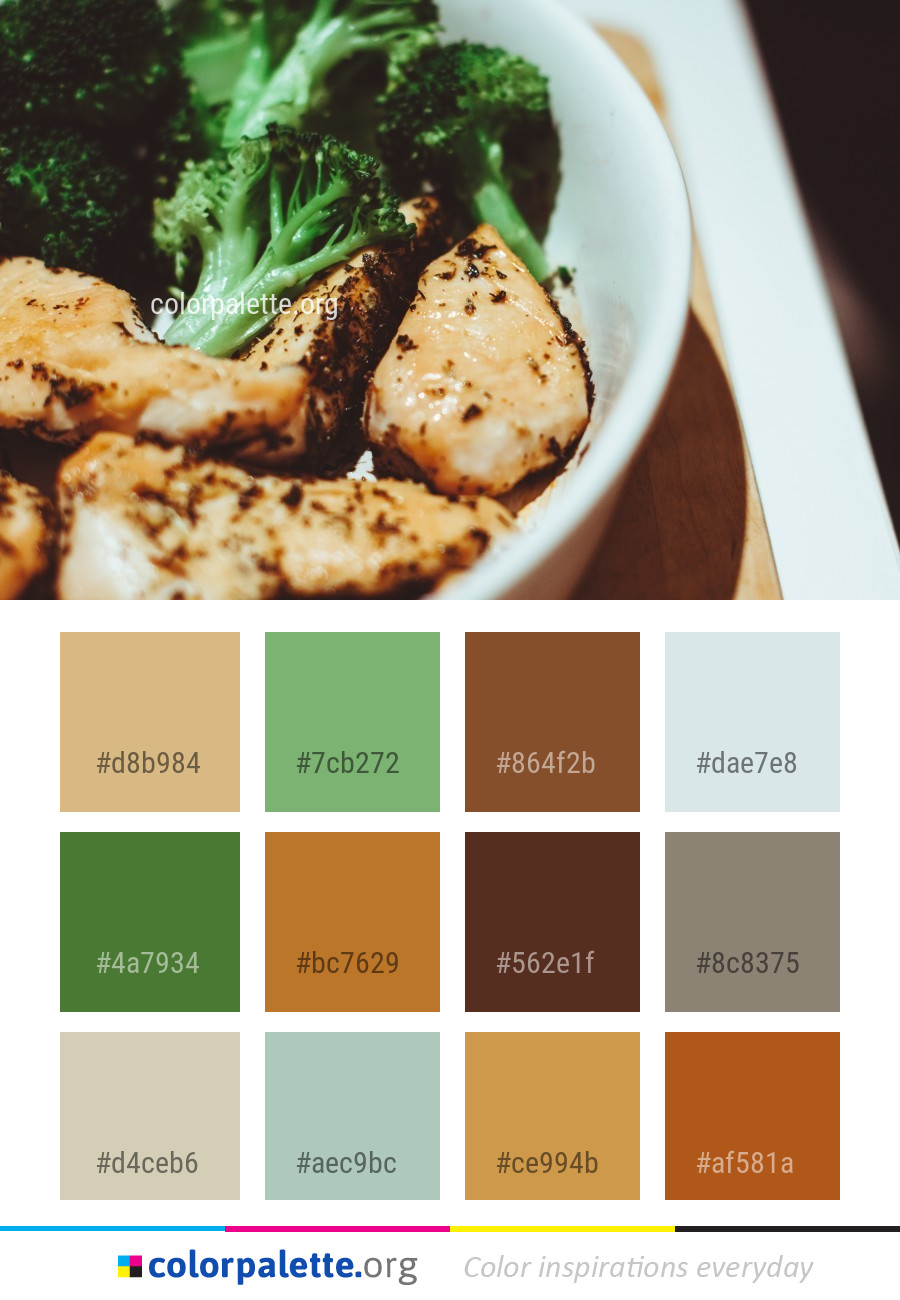 Vegetarian Food Color Palette Ideas Colorpalette Org