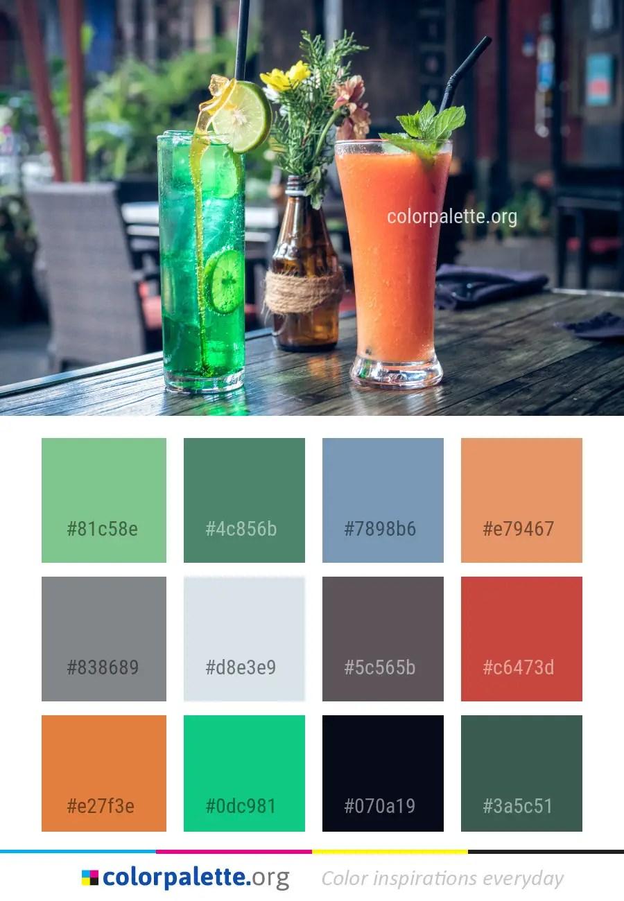 Apricot Color Palette ideas | colorpalette org